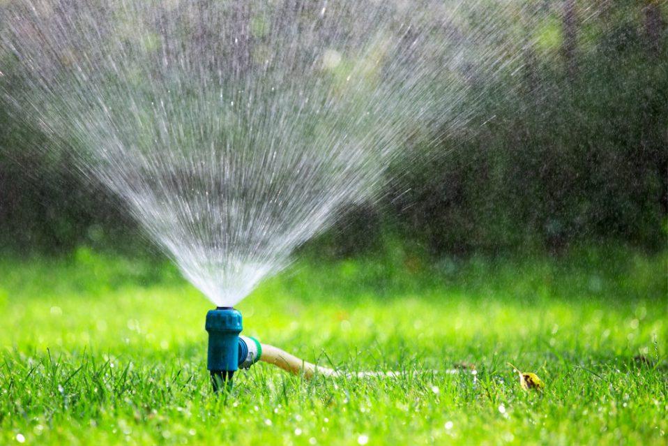 best lawn and garden sprayers