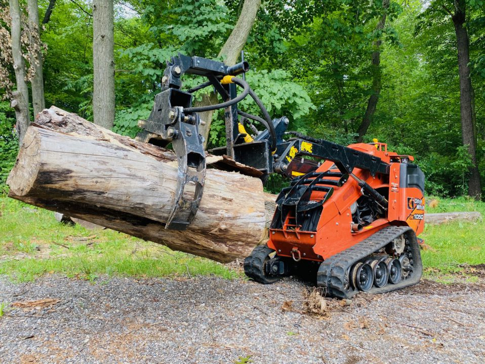 tree clearing service