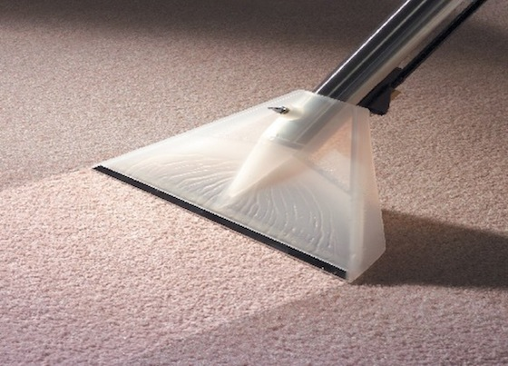 carpet cleaning in eastern suburbs sydney